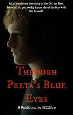 THG Fanfiction- Through Peeta's Blue Eyes by Millilitre