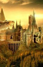 Streiche , liebe , Hogwarts by SELINE02