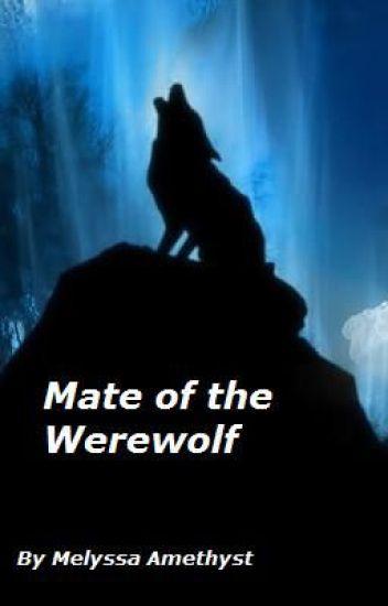 Mate of the Werewolf (boyxboy)