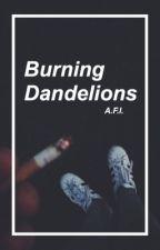 Burning Dandelions (5SOS/Ashton Irwin) by MaegannR5