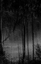 Sterek one-shots by sourwolf101
