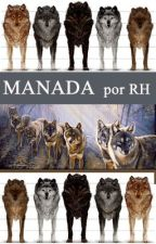 MANADA by RedHollow