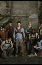 Maze Runner preferences by Maze_Wolf