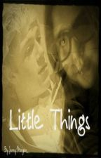Little Things  -[Niall Horan fanfic] by jennypennyxx