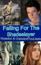 Falling for the Shadeslayer by Rosadon