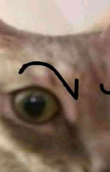 Imágenes yaoi ewe