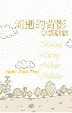 Bóng Lưng Nhạt Nhòa (消逝的背影) - Hoặc Trạc Trạc by chengfeng