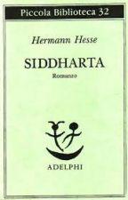 SIDDHARTA by GiacomoNapoli