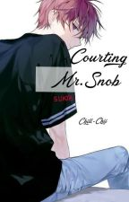 Courting Mr. Snob by Chill-Chii