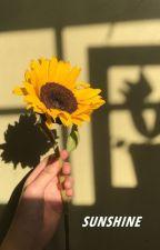 Sunshine by lisathepenguin