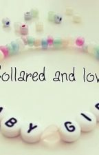 Collared and loved by maylin0616