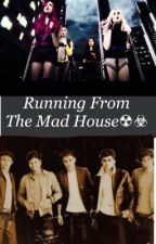 Running From The Madhouse (LittleDirection) by DreamerLoveDreams