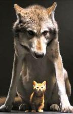 Werewolf and werecat spells by nickie1230