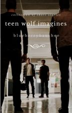 Teen Wolf Imagines - [REQUESTS CLOSED] by blueberrybanshee