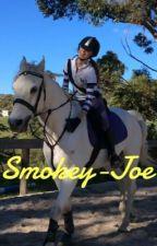My horse Smokey-Joe by Sophiaklewis