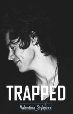 Trapped (H. S.) by Valentina_Stylesxx