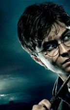 Harry Potter a Percy Jackson by iren03