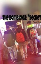 "The_Bomb_Digz: ""Secret"" by mindless_beauty21"