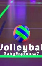 Volleyball by GabyEspinosa7