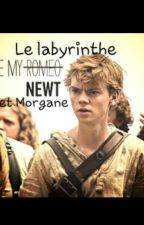 Le Labyrinthe -Newt- by Thomaswithbadboy