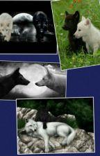 Best Friends (Werewolf) by Crazychick9999