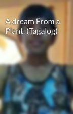 A dream From a Plant. (Tagalog) by Pnshpp