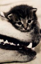 Purr For Me Kitty by RedLolipopGirl