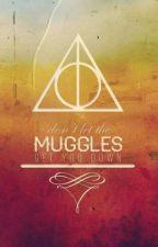 Extraños Muggles y Como Domarlos by misovi