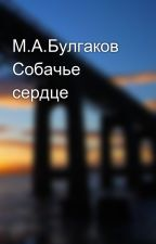 М.А.Булгаков Собачье сердце by Dasha_Koresh