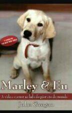 Marley & Eu by viana83943928