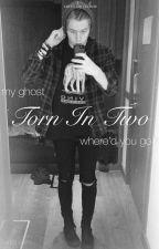 Torn in two (Luke Hemmings) by bxndtxbers