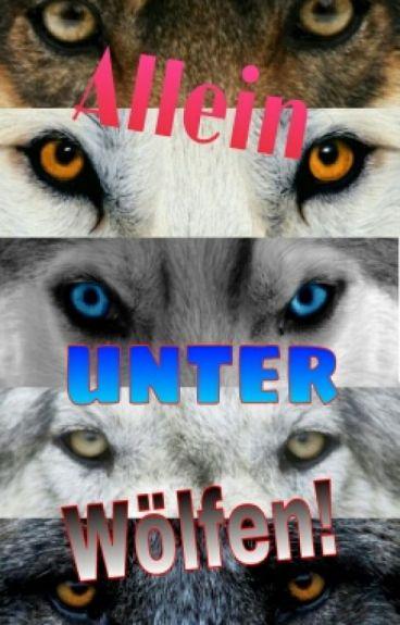 Allein unter Wölfen!