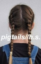 pigtails//h.s by magicallysanii