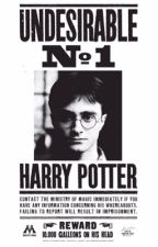 Harry potter imagines/ preferences  by evilbellatrix