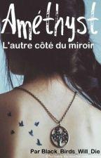 Améthyst, l'autre côté du miroir by Black_Birds_Will_Die