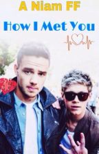 How I Met You (A Niam FF)*ON HOLD* by Janine-1D