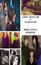 Harry Orion Lupin & The Big Secret by HermioneJeanMalfoy1