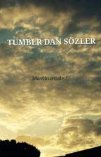 TUMBLR DAN SÖZLER by Mavikurdale2