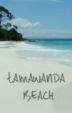 Tamawanda Beach by rrrMills