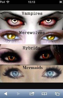 Mermaid And Vampires Hb Wattpad