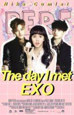 The day I met EXO | EXO fanfic by nikacumlat