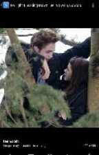 Edward and Bella by TheRealBellaSwan18