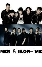 Winner and Ikon~ Memes by PrincessYoursKpop14