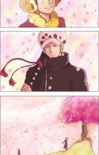 Un amor bajo el árbol del cerezo by ArielSakuraElricUchi