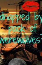 kidnapped by a pack of werewolves?! by afraid_of_falling123