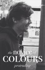 the novice of colours || stylinson by protruding