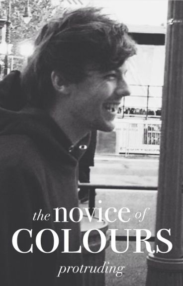 the novice of colours || stylinson