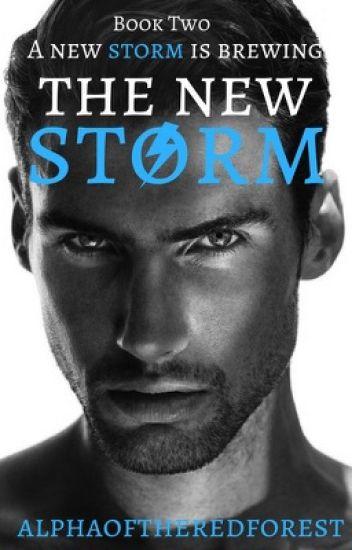 The New Storm (Boyxboy)