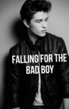 Falling For The Badboy by Catherinexax
