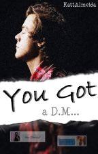 You got a DM... [H.S fanfic] by KattAlmeida
